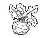 Disegno di Cavolo rapa da colorare