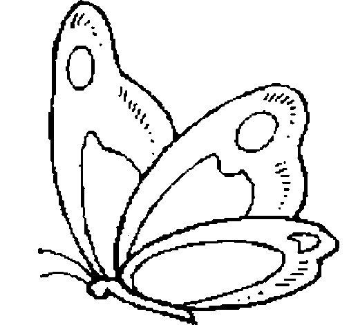 Disegno Di Farfalla 14 Da Colorare