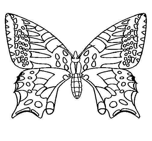 Disegno Di Farfalla 5 Da Colorare
