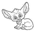 Disegno di Fennec da colorare