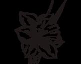 Disegno di Fiore de niarciso da colorare