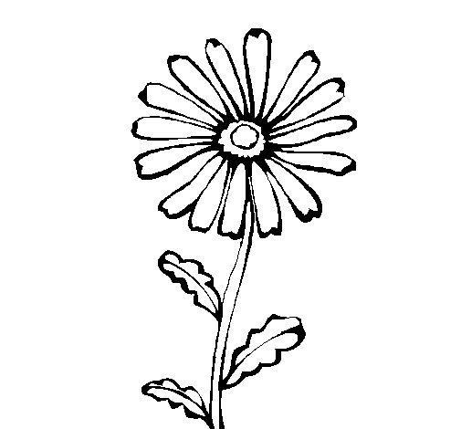 Disegno di fiore di campagna da colorare for Disegni di cabina di campagna