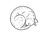 Disegno di Gattino riposa da colorare