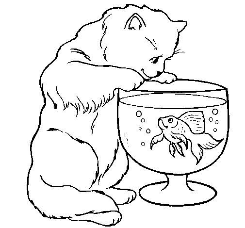 Disegno di gatto che osserva il pesciolino da colorare for Disegno gatto facile