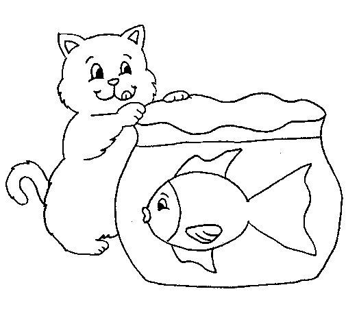 Disegno Di Gatto E Pesce Da Colorare