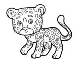 Disegno di Ghepardo giovane da colorare