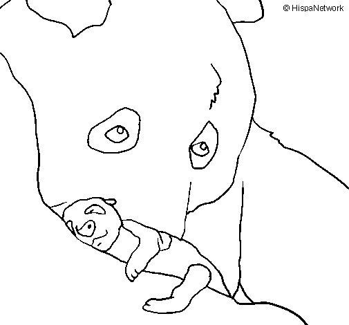 Disegno di orso panda con il suo cucciolo da colorare - Cucciolo da colorare stampabili ...
