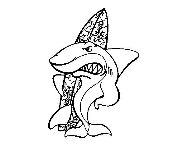 Disegno di squalo surfista da colorare for Disegno squalo