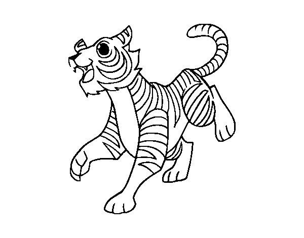 Disegno di Tigre reale del Bengala da Colorare - Acolore.com