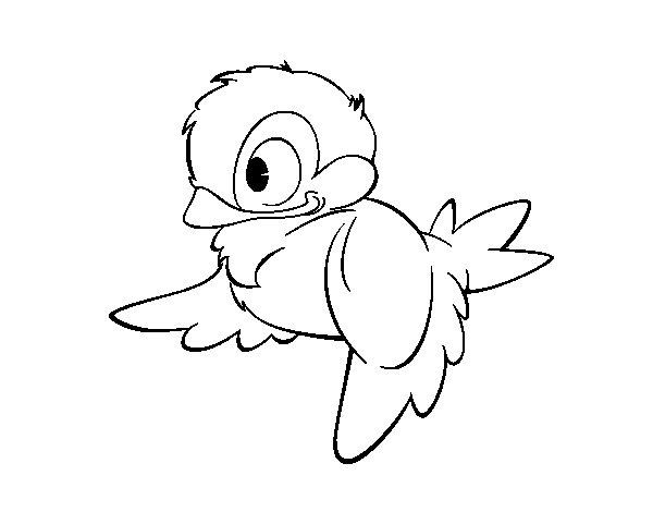 Disegno di uccellini del bosco da colorare - Semplici disegni di uccelli ...
