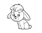 Disegno di Un coniglio di campagna da colorare