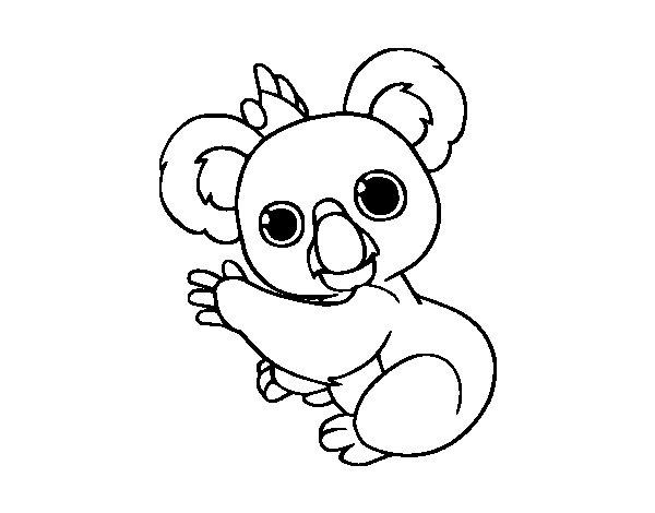 disegno di un koala da colorare