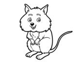 Disegno di Un piccolo criceto da colorare