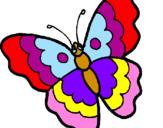 Disegno Farfalla  pitturato su farfalla