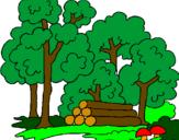 Disegno Bosco  pitturato su alberi