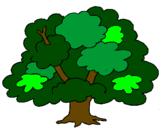 Disegno Albero pitturato su quercia