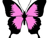 Disegno Farfalla con le ali nere pitturato su shamira
