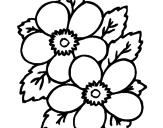 Disegno Fiori pitturato su fiore