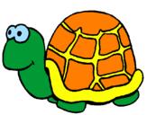 Disegno Tartaruga  pitturato su tartaruga