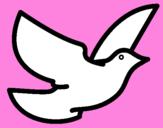 Disegno Colomba della pace  pitturato su Palma