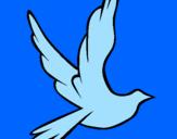 Disegno Colomba della pace in volo pitturato su rachele