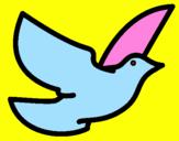 Disegno Colomba della pace  pitturato su Melissa