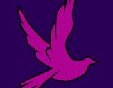 Disegno Colomba della pace in volo pitturato su muro