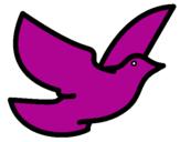 Disegno Colomba della pace  pitturato su erica