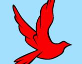 Disegno Colomba della pace in volo pitturato su fabio