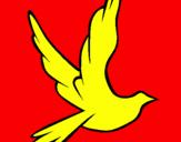 Disegno Colomba della pace in volo pitturato su matilde