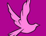 Disegno Colomba della pace in volo pitturato su tommy08