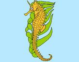 Disegno Cavalluccio marino orientale pitturato su Davide