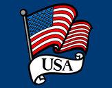 Disegno Bandiera degli Stati Uniti pitturato su ciccio