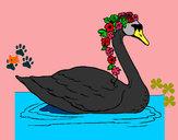 Disegno Cigno con fiori  pitturato su helena
