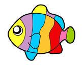 Disegno Pesci pagliaccio pitturato su lucagibbs