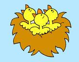 Disegno Nido con gli uccellini  pitturato su coccinella
