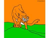 Disegno Tigre con affilati canini  pitturato su GABRIEL17