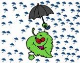 Foglia con parasole