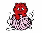Gatto con un gomitolo di lana