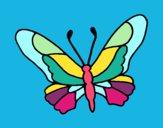 Farfalla 6a