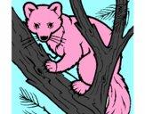 Disegno Martora europea su un albero  pitturato su piob