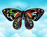 Farfalla alessandra