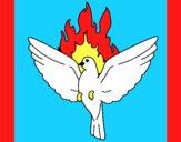 Colomba della Pentecoste