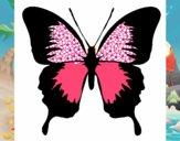 Farfalla con le ali nere