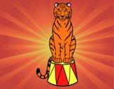 Disegno Tiger di circo pitturato su francy04