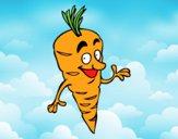Signore carota