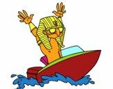 Egiziano navigatore