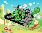 Motocicletta GP