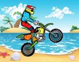 Motocicletta il trial