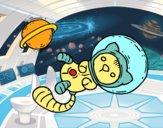 Gattino astronauta